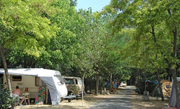 Camping-Le-Rossignol-Emplacements.jpg